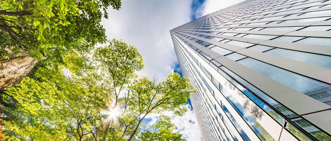 Avison Young announces net zero carbon commitment in the UK by 2030